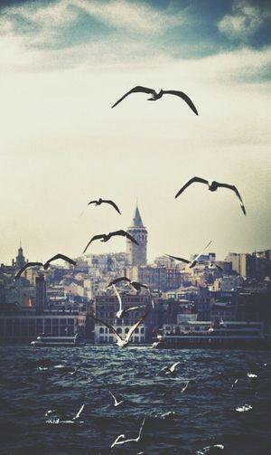 Turkiye. Istanbul