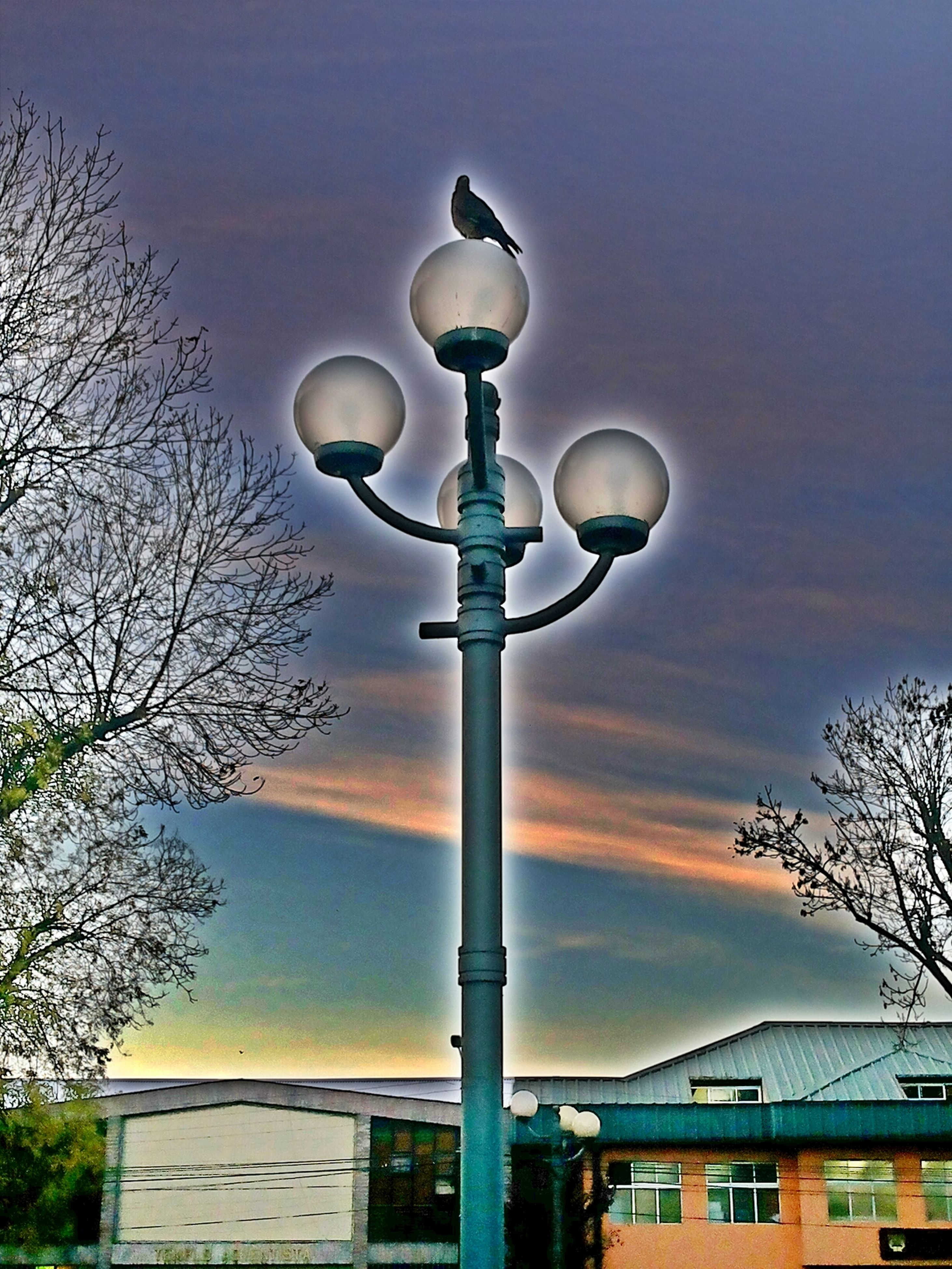 street light, sky, low angle view, lighting equipment, tree, built structure, architecture, cloud - sky, building exterior, lamp post, electricity, cloudy, silhouette, illuminated, cloud, electric light, dusk, outdoors, no people, bare tree