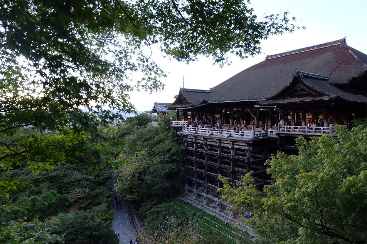 Tree Architecture Built Structure Outdoors Building Exterior Nature OSAKA.Tranquility Beauty In Nature Japan Kiyomizudera Fujifilm Lovr Me Or Hate Me I Do Not CareTravel Destinations