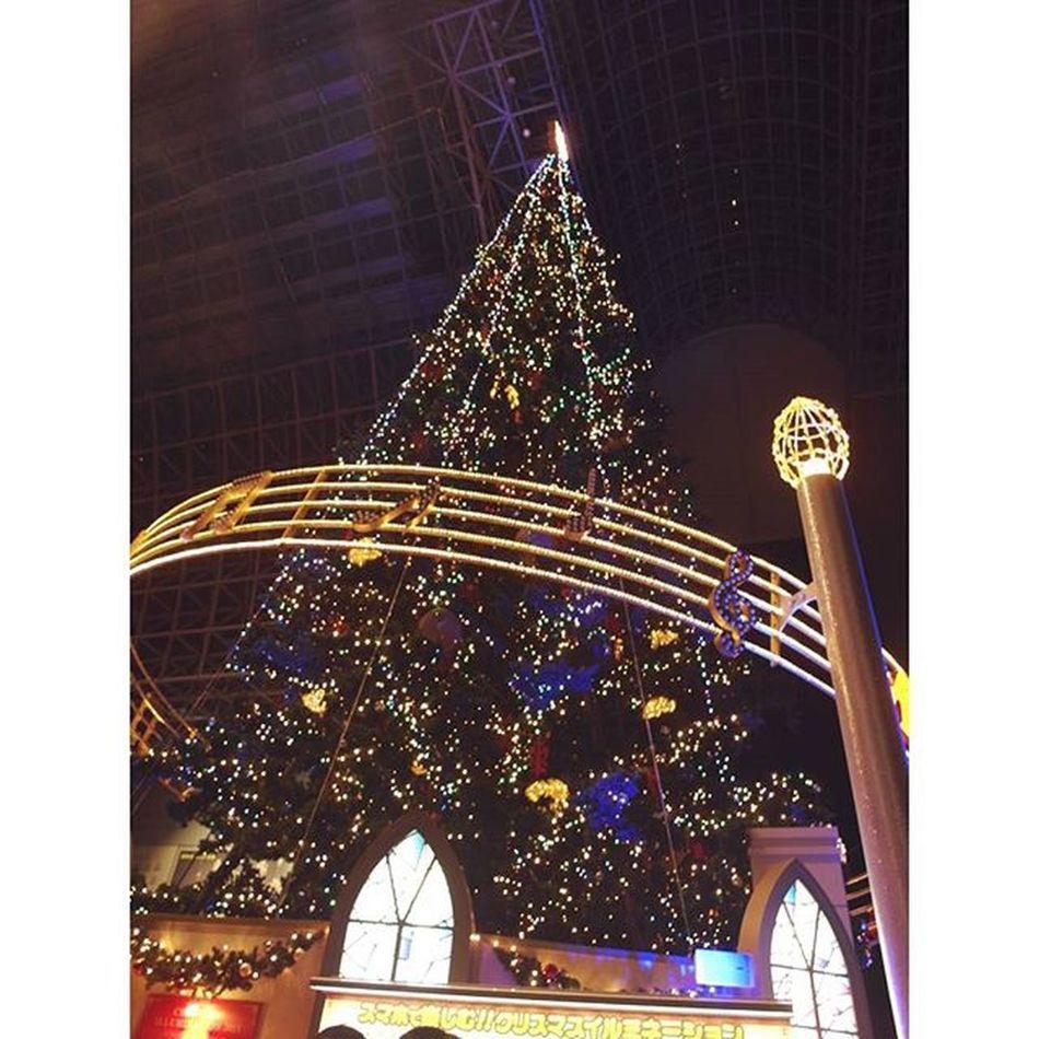 Marry Christmas Kyotostation Tree Chrismastree