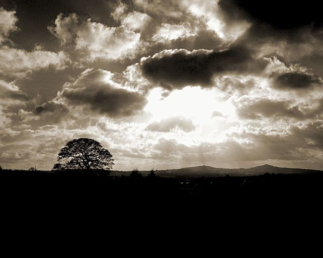 The sun always shines on Halesowen EyeEmNewHere Halesowen Hills Beams Of Light Sunshine Clouds Beauty In Nature Nature Sky Tree Tranquility Silhouette Landscape No People Outdoors