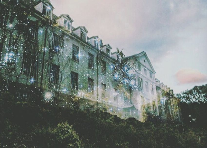 Building Exterior Architecture Built Structure Window Outdoors No People House Green Color Nature Asylum Hospital Sky Tree Old Old Buildings Old House Beautiful Tragic  Story EyeEmNewHere