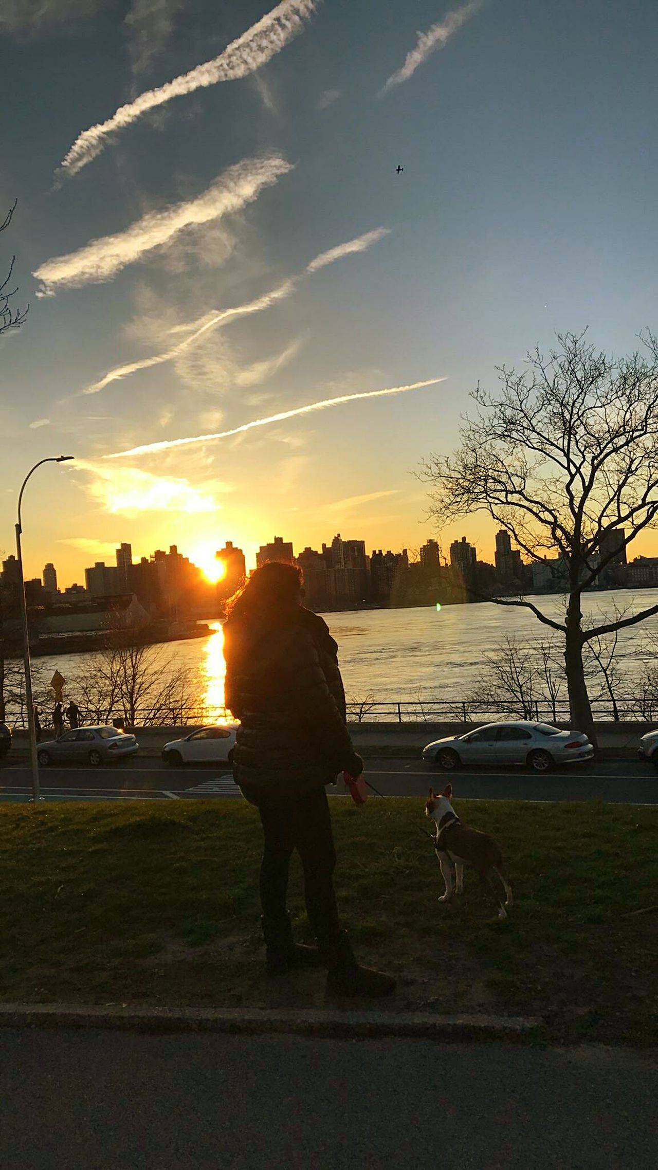 Perfect day... 🌇🌞🌳🌸 Hello World ✌ Beautiful People One Woman Only That's Me Sky Walking Hello World Check This Out Outdoors Sunset One Person Nature Day City Cold Days Park Astoriapark Astoria Queens Astoria, Queens, NYC Bostonterrier I❤my Dog Street Winter Sun