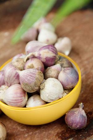 fresh organic garlic Garlic Close-up Day Food Food And Drink Freshness Garlic Garlic Bulb Healthy Eating Indoors  Ingredient No People Purple Raw Food Still Life Still Life Food Table Vegetable