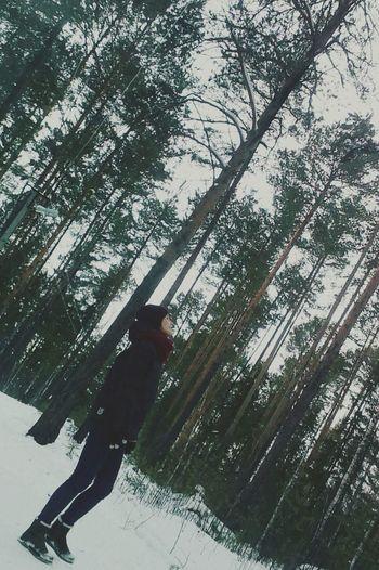 ? I admire nature❤️❄️ Nature Enjoying Life Hello World Forest