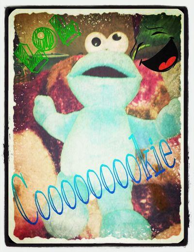 lok @ Cookie Monster