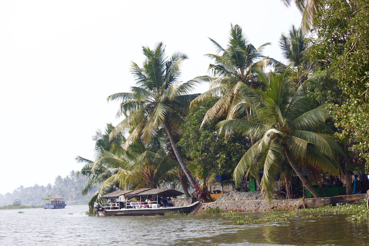 Beauty In Nature Boat Cocktails Coconut Trees Kerala Lake Lake View Lakeshore Lakeside Mode Of Transport Nature Palm Tree Reflection Scenery Scenics Sky Tranquility Travel Travel Destinations Traveling Tree Water Water Reflections Waterscape