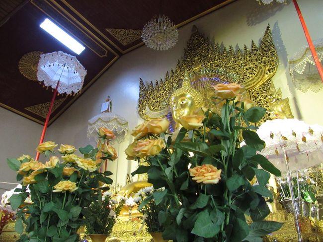 Buddha Golden Pagoda Shan Peaceful Praying Taking Photos IPhoneography