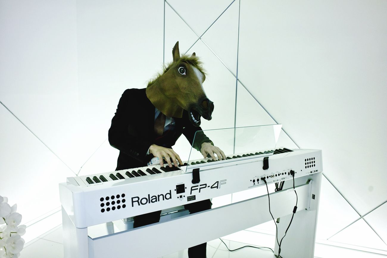 Piano Moments Low Angle View One Animal Indoors  No People Monkey Animal Themes Working Day