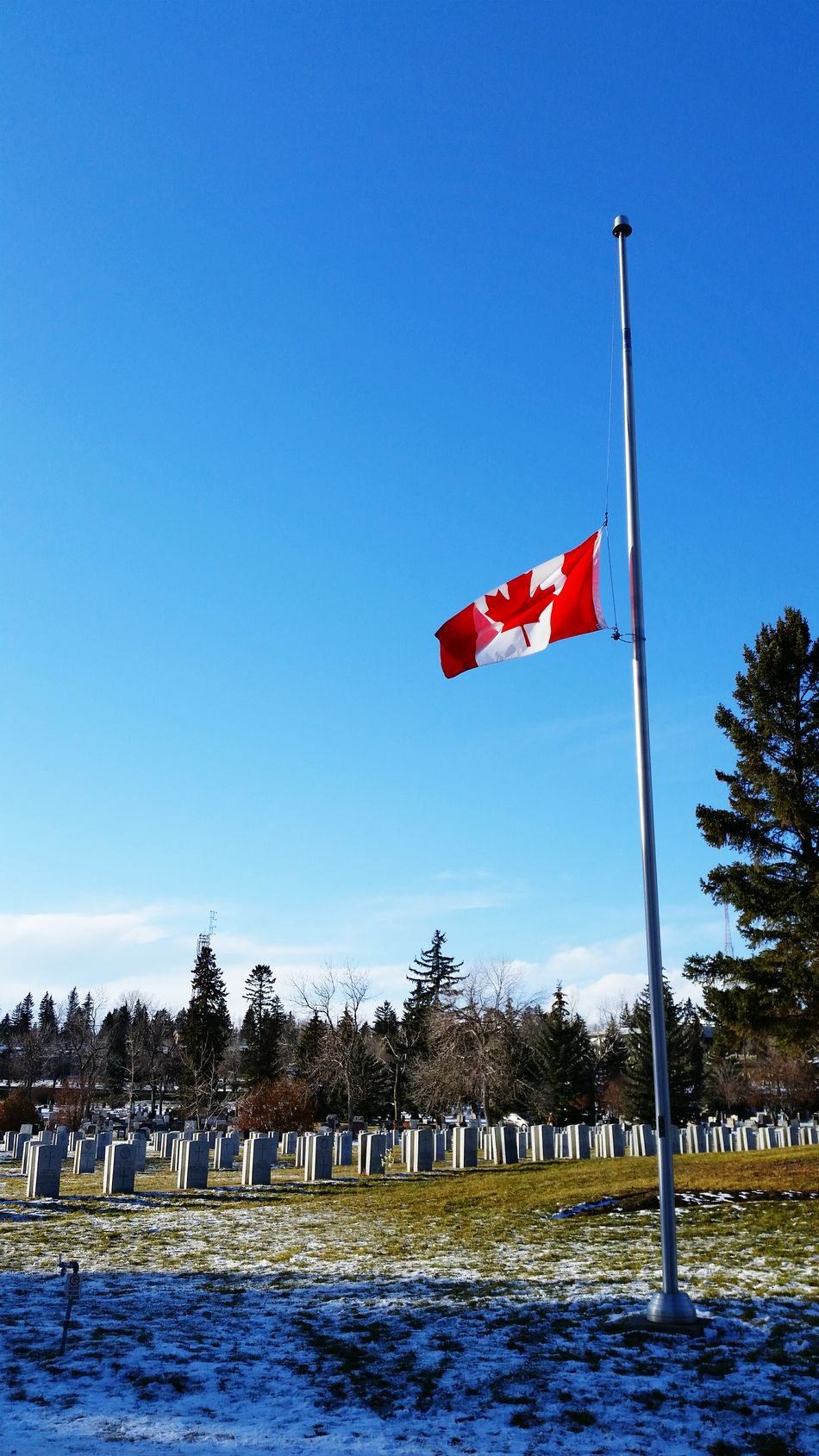 Beautiful stock photos of veteran's day, Canadian Culture, Canadian Flag, Cemetery, Copy Space