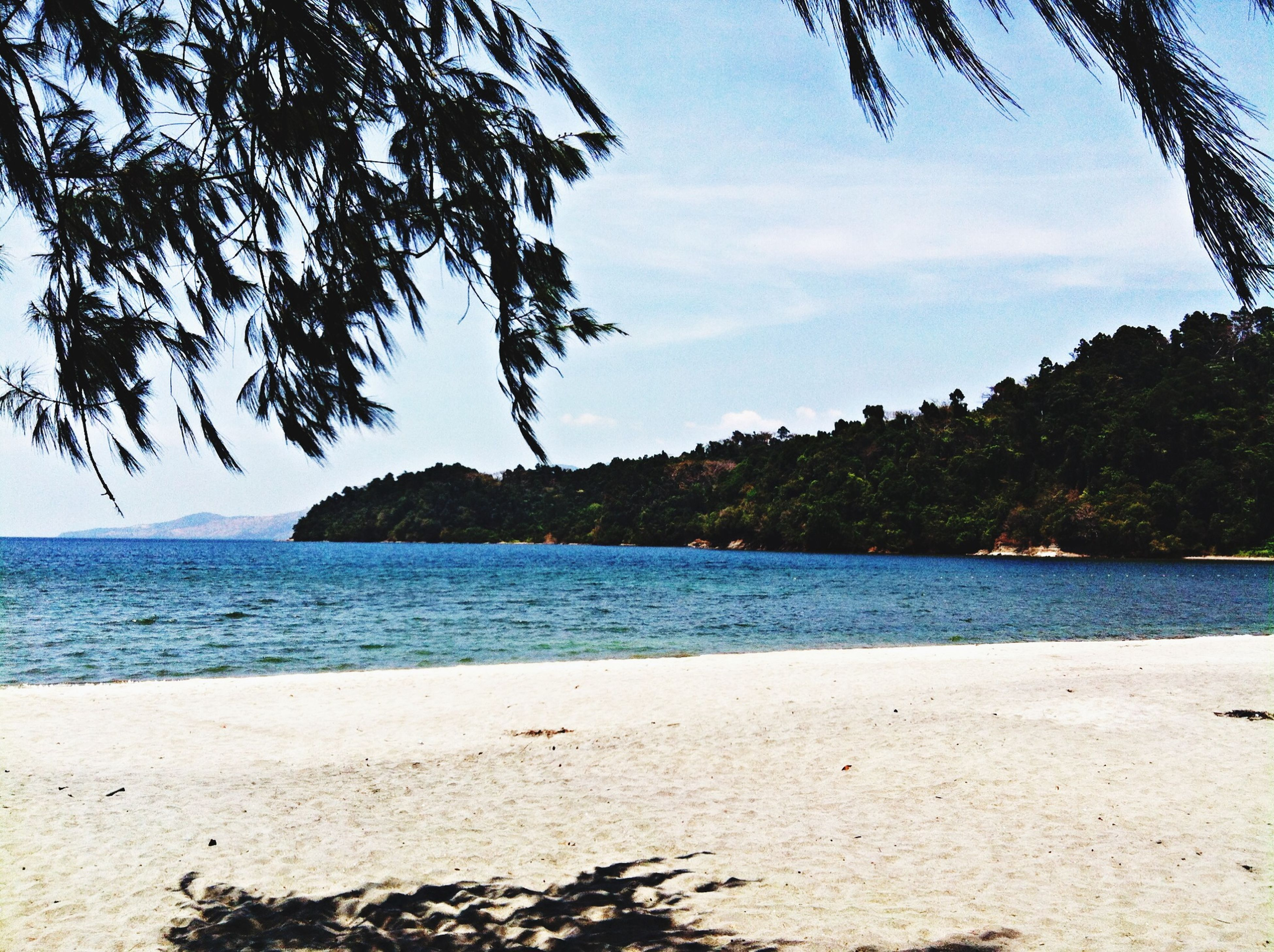 water, tree, beach, sea, tranquil scene, tranquility, sky, scenics, shore, palm tree, beauty in nature, sand, nature, blue, idyllic, mountain, cloud, coastline, growth, outdoors