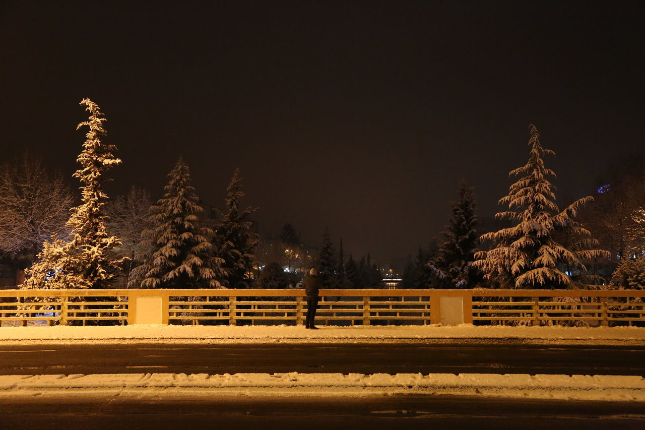 night, railroad track, tree, rail transportation, no people, transportation, outdoors, winter, nature, cold temperature, sky