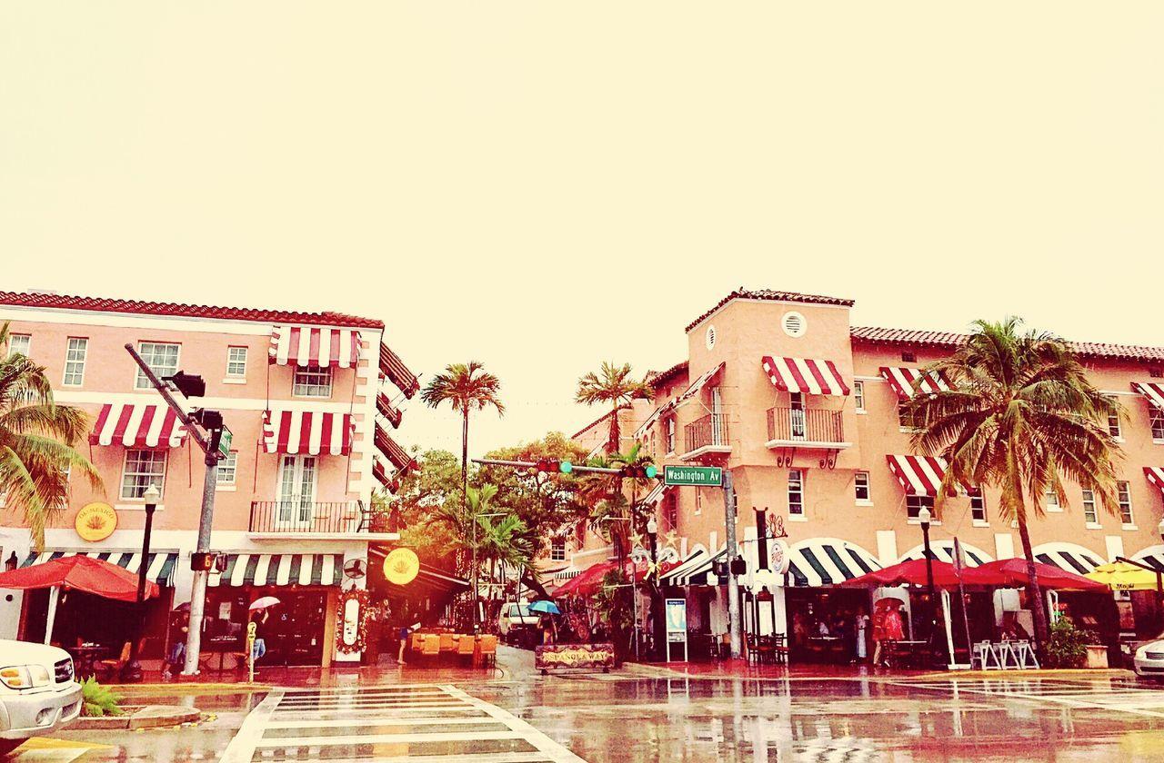 Rainy day Building Travel Photography Street Miami Beach Espagnolaway Palm Trees Showcase: February Architecture