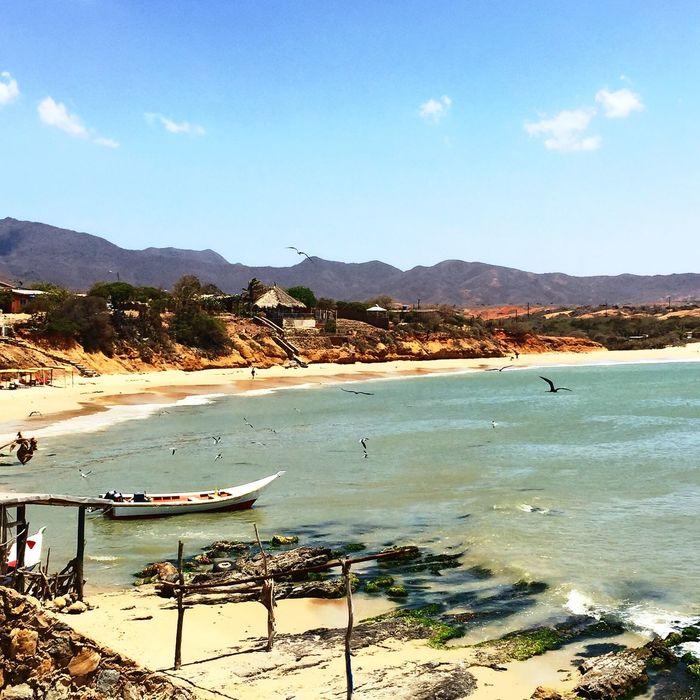 Nature Summer Beach Relaxing Vacation Margaritaisland Venezuela