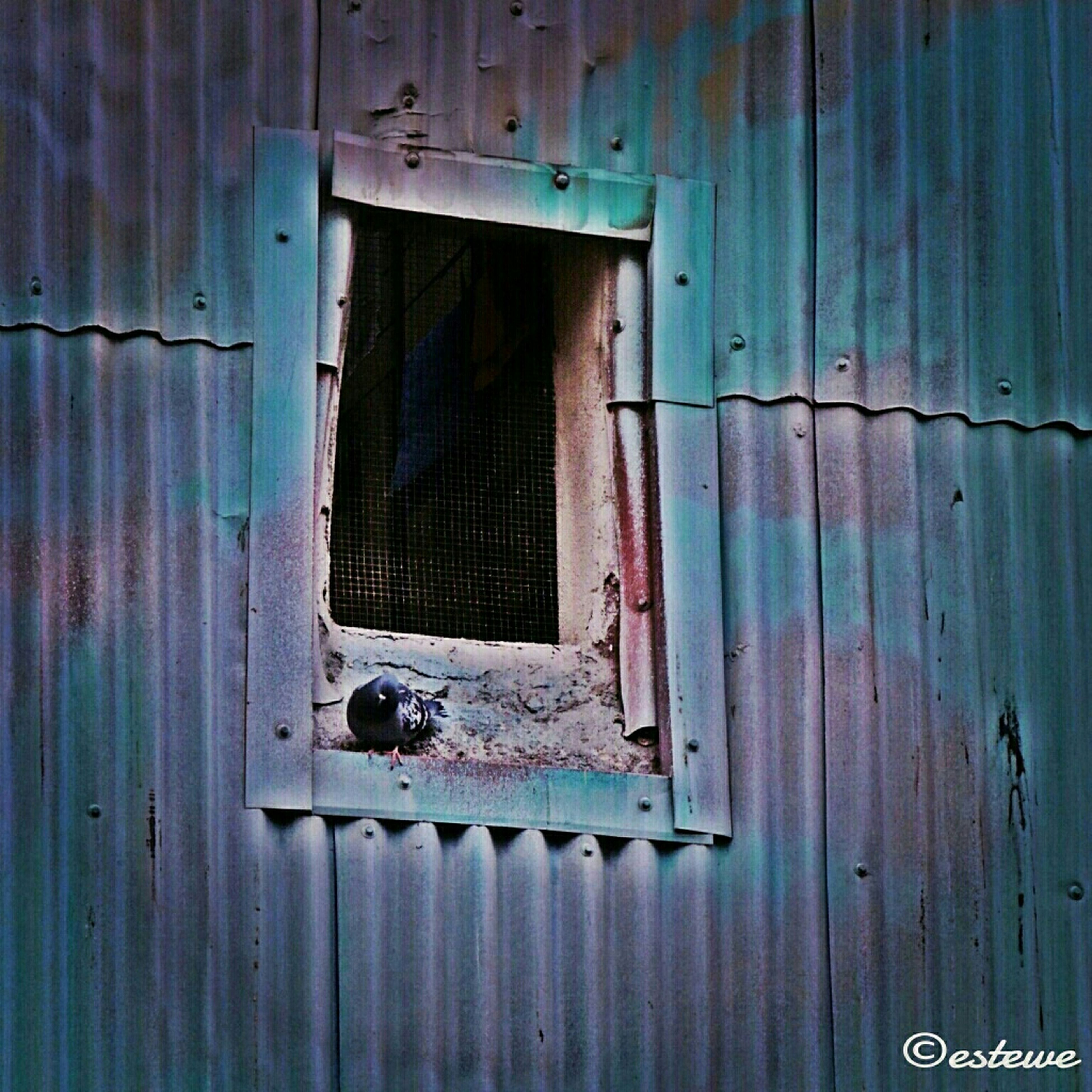 built structure, architecture, abandoned, old, door, weathered, building exterior, damaged, house, run-down, obsolete, deterioration, window, wood - material, closed, bad condition, residential structure, rusty, safety, protection