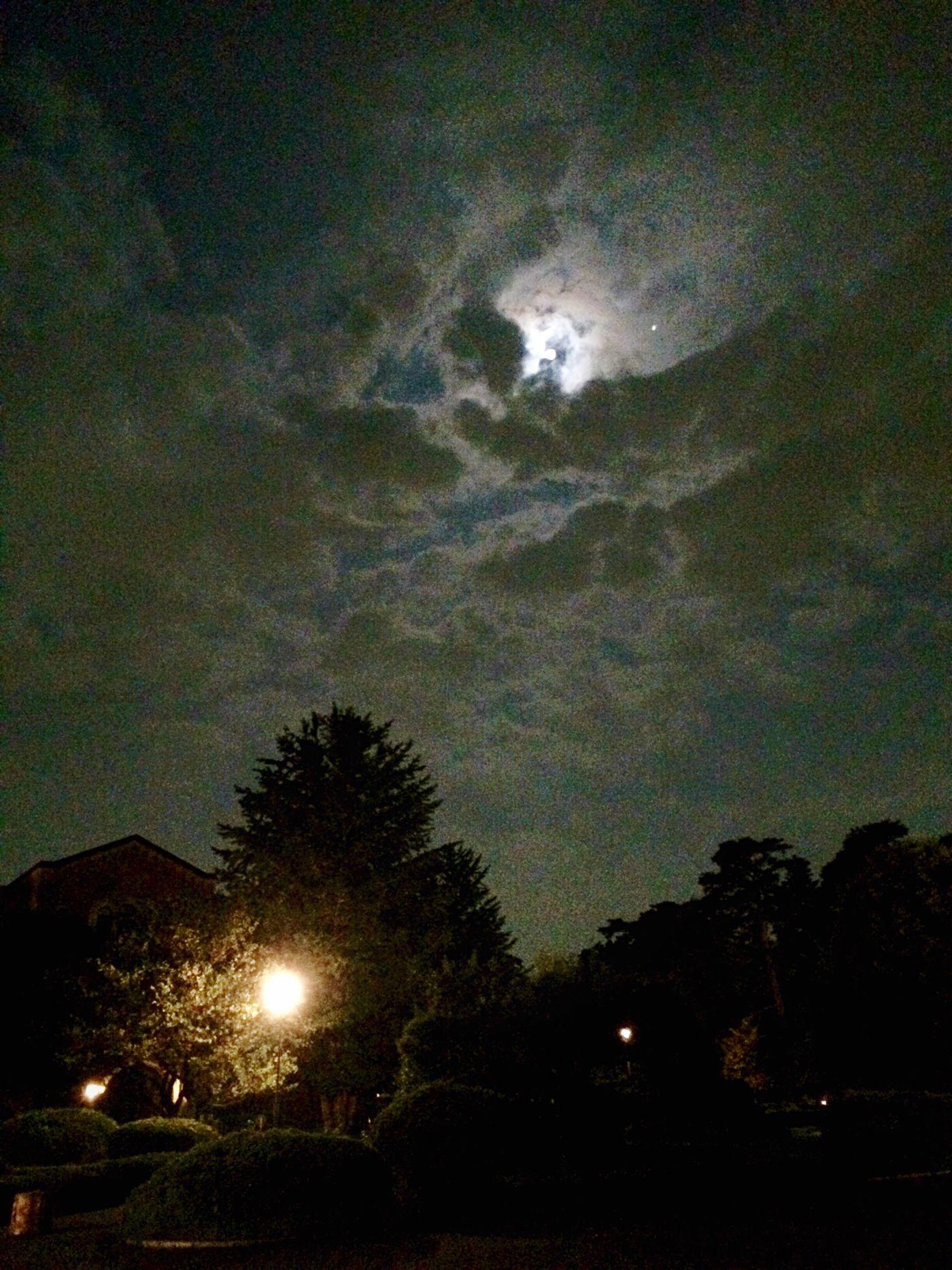 少しだけ、 十五夜 🎑🌝の お月見