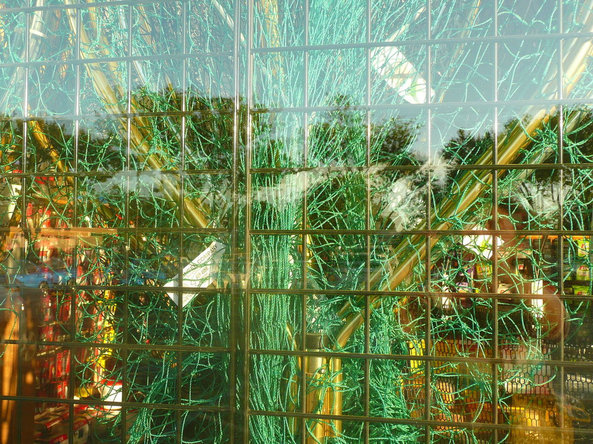 window from fishing gear store Abstractions In Colors Beauty In Nature Business Day Grass Green Color Growth Lake Merchendise Nature No People Outdoors Plant Reflection Sales Store Window Storefront Display Storefront View Storefronts Sunny Sunny Day Tag Tree Water Window