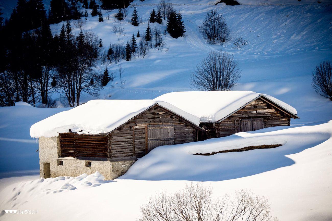 Rueras Graubünden Schnee Snow Snow ❄ Winter Wintertime Winter Wonderland Gade Stall
