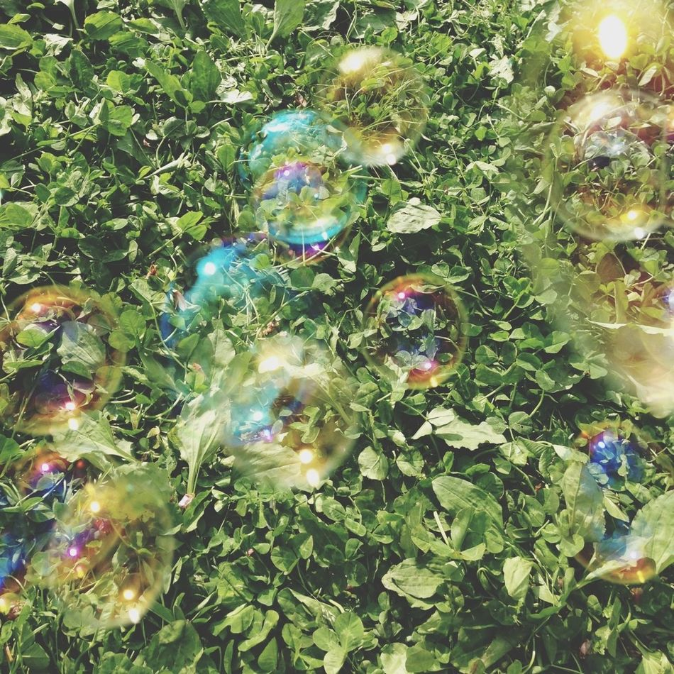 Beautiful stock photos of bubbles, Backgrounds, Bubble, Day, Focus On Background
