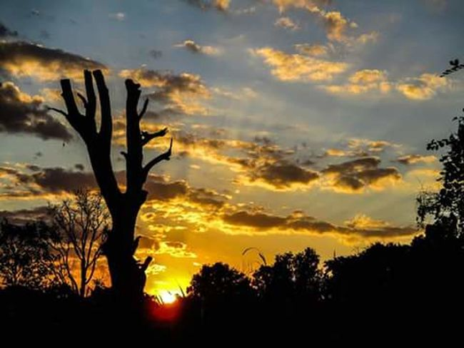 The Sun. Travel Destinations Architecture Photograph Day Photographing Silhouette Tree Sunset Nature City Nature Backgrounds Photoart Photography Themes Picture Frame People Sky Thailand🇹🇭