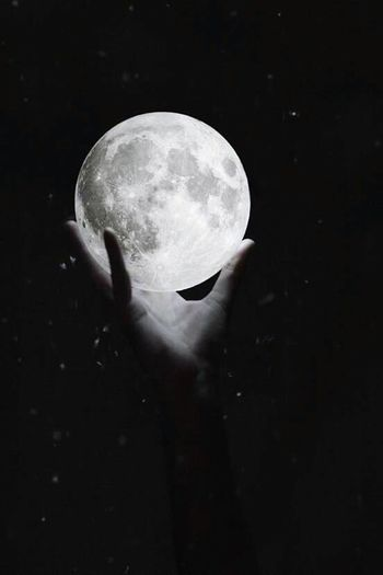 Luna My Beautiful Moon Love Loveeeeeeeeee💜