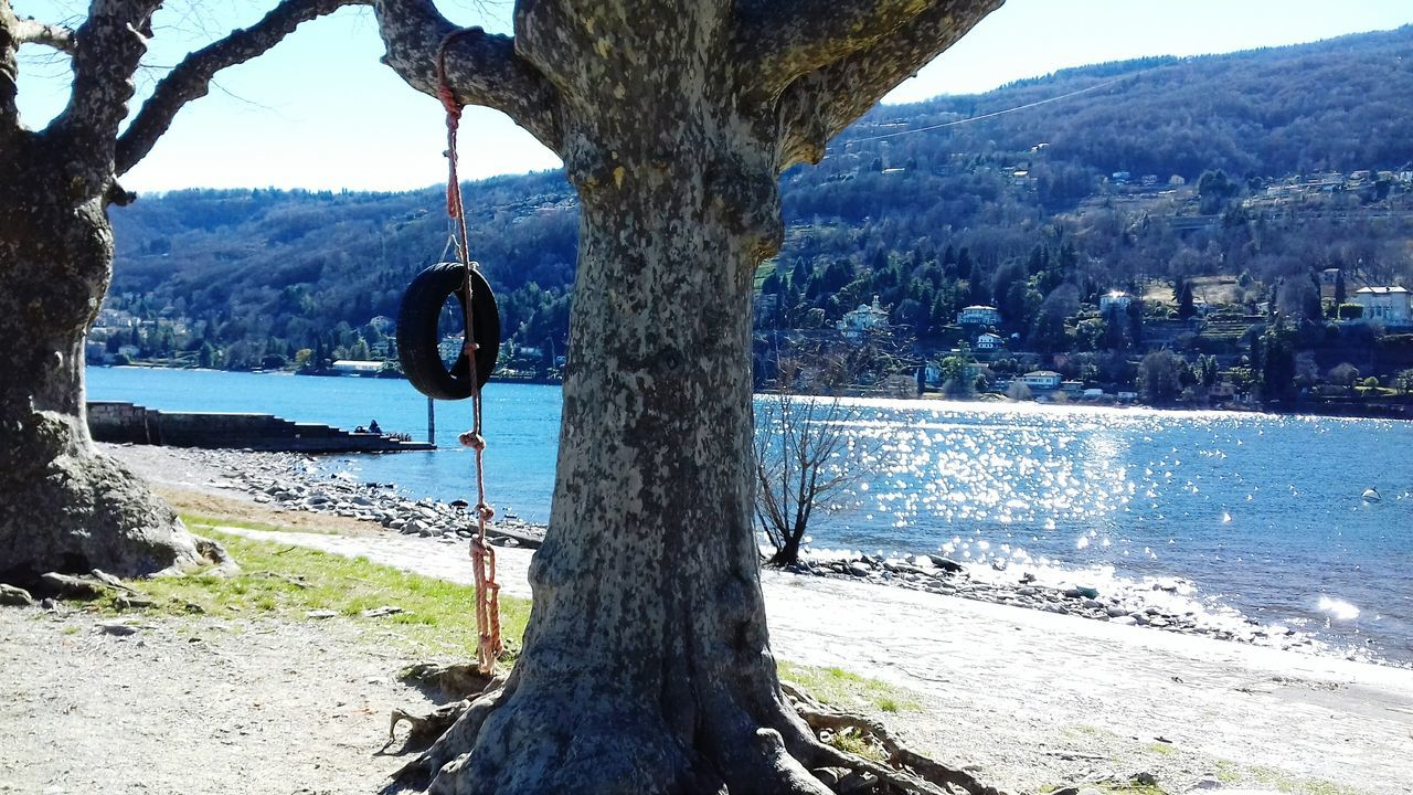 water, tree, nature, hanging, beauty in nature, day, no people, sea, scenics, tranquil scene, outdoors, tree trunk, mountain, sky