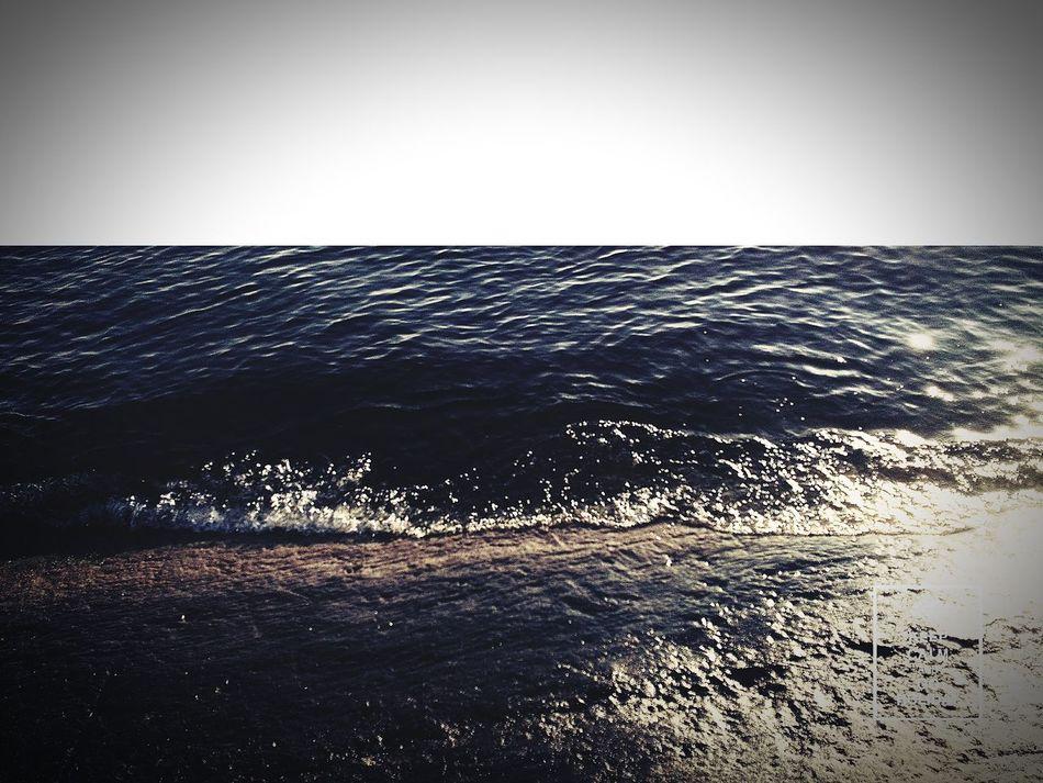 First Eyeem Photo Feel The Journey Flauers море👻🌊 море солнце пляж волны море море край безбрежный море😍 пляжа🌊🏊☀ вода