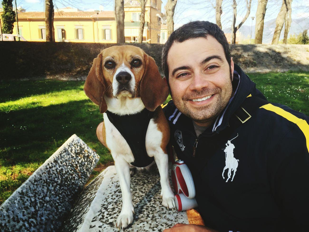 Beagle Beaglelove Alessiolazzeri Amoremio