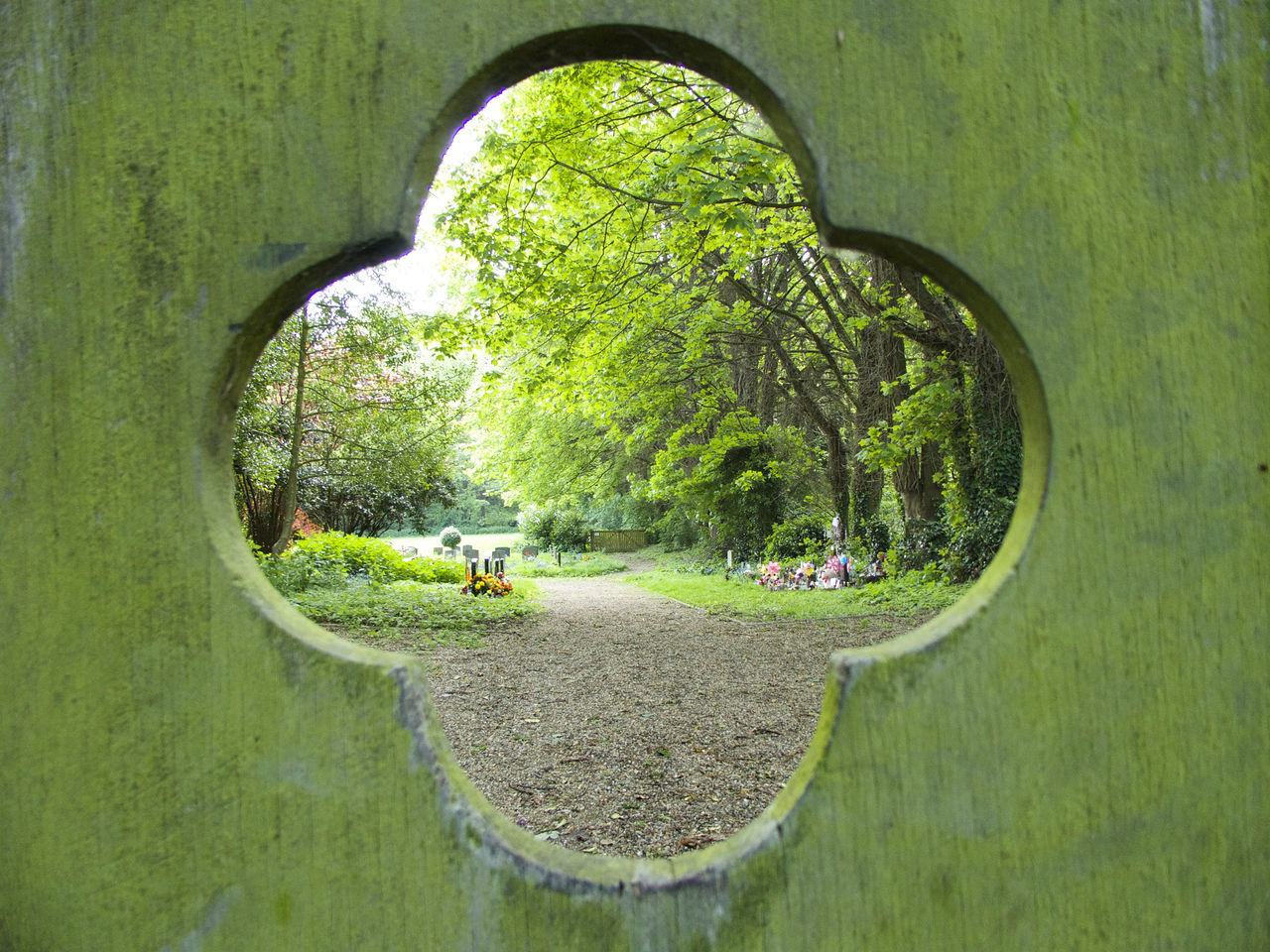 A Quiet Place Arch Architecture Built Structure Day Grass Graveyard Graveyard Beauty Green Color Green Gate Nature No People Old Gate Outdoors Quiet Moments Quiet Places Resting Place Road Sacred Ground Tree