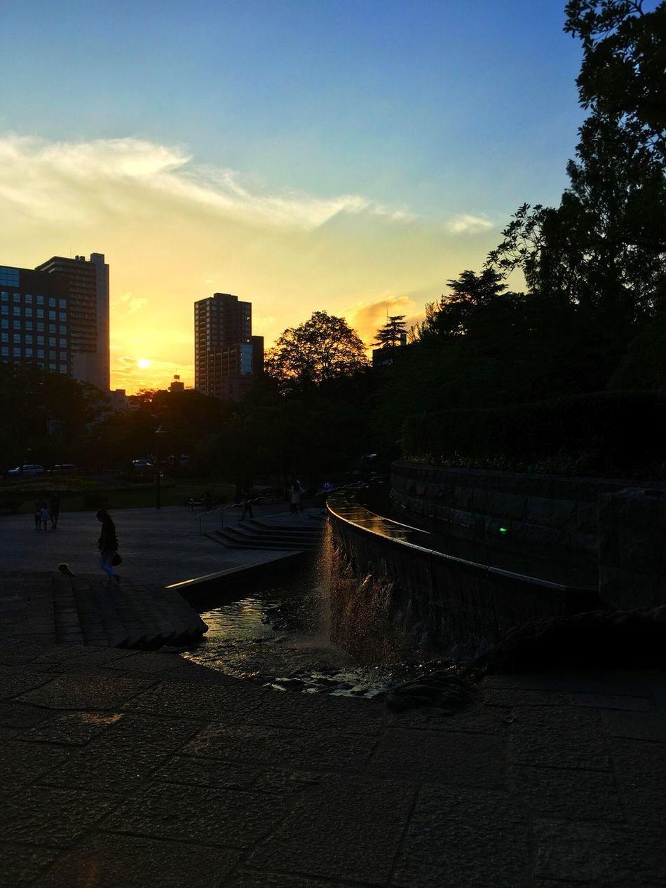 長閑かな夕暮れ。皆、ポケモンGOに興じております(^◇^;) Sunset Sunset_collection Clouds And Sky Evening Sky Evening Evening Sun Park Tadaa Community Hello World From My Point Of View