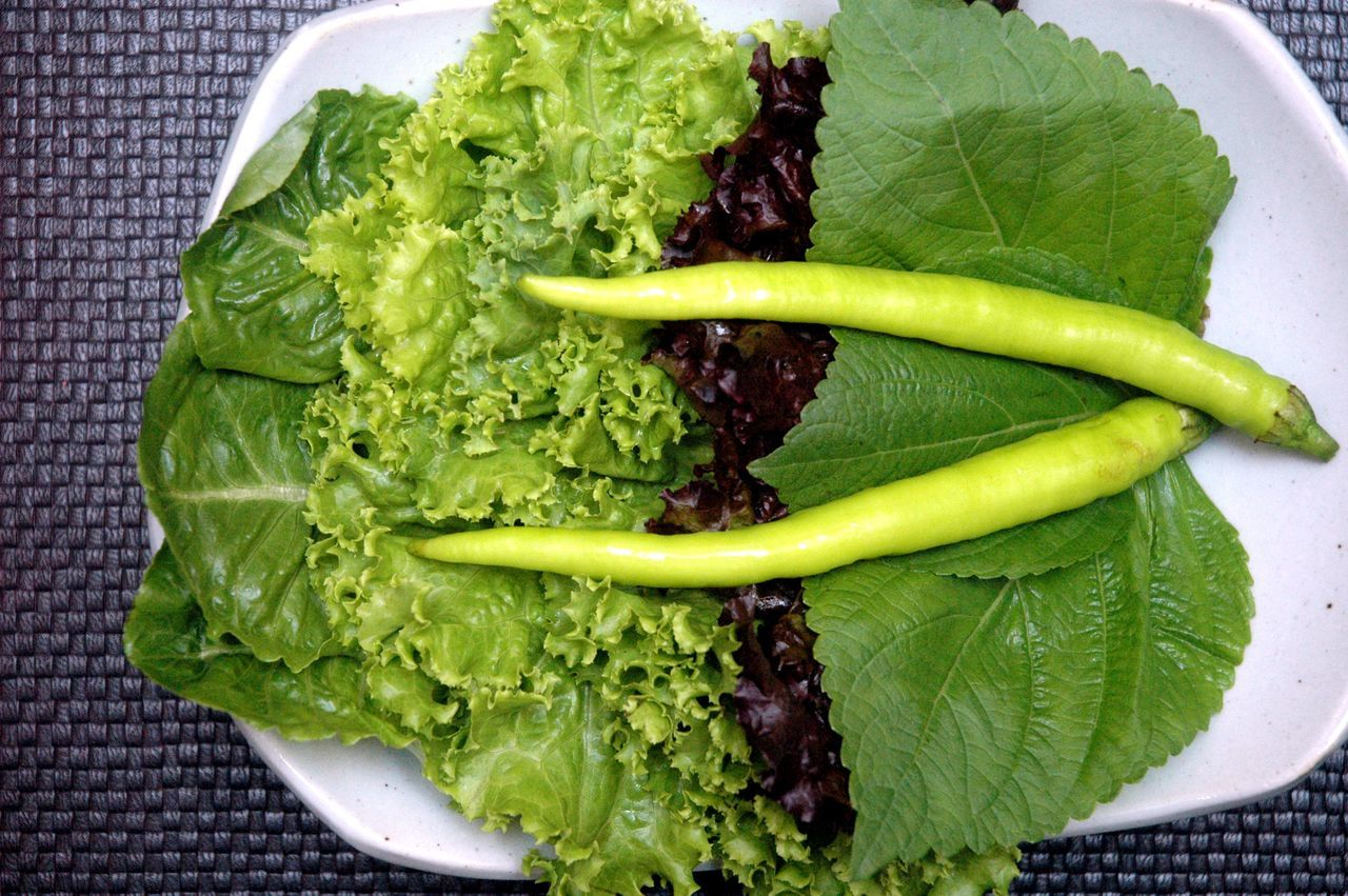 Broccoli Close-up Food Food And Drink Freshness Green Color Healthy Eating Indoors  No People Plate Vegetable