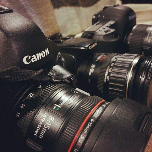 Лежбище фото камеры Canon Eos350d mark3 1DX photo