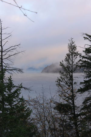 Cold Morning Cold Water Foggy Foggy Cliff Port Lake Fog Lake View Okanagan Valley Trees On The Beach