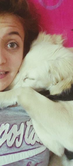 My Love❤ Cute Pets I Love My Dog My Lovely Dog I Love Pets
