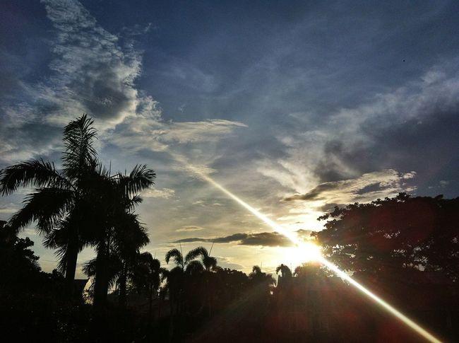 Sunrise in TN 7 Sunrise Reflection IPSSky