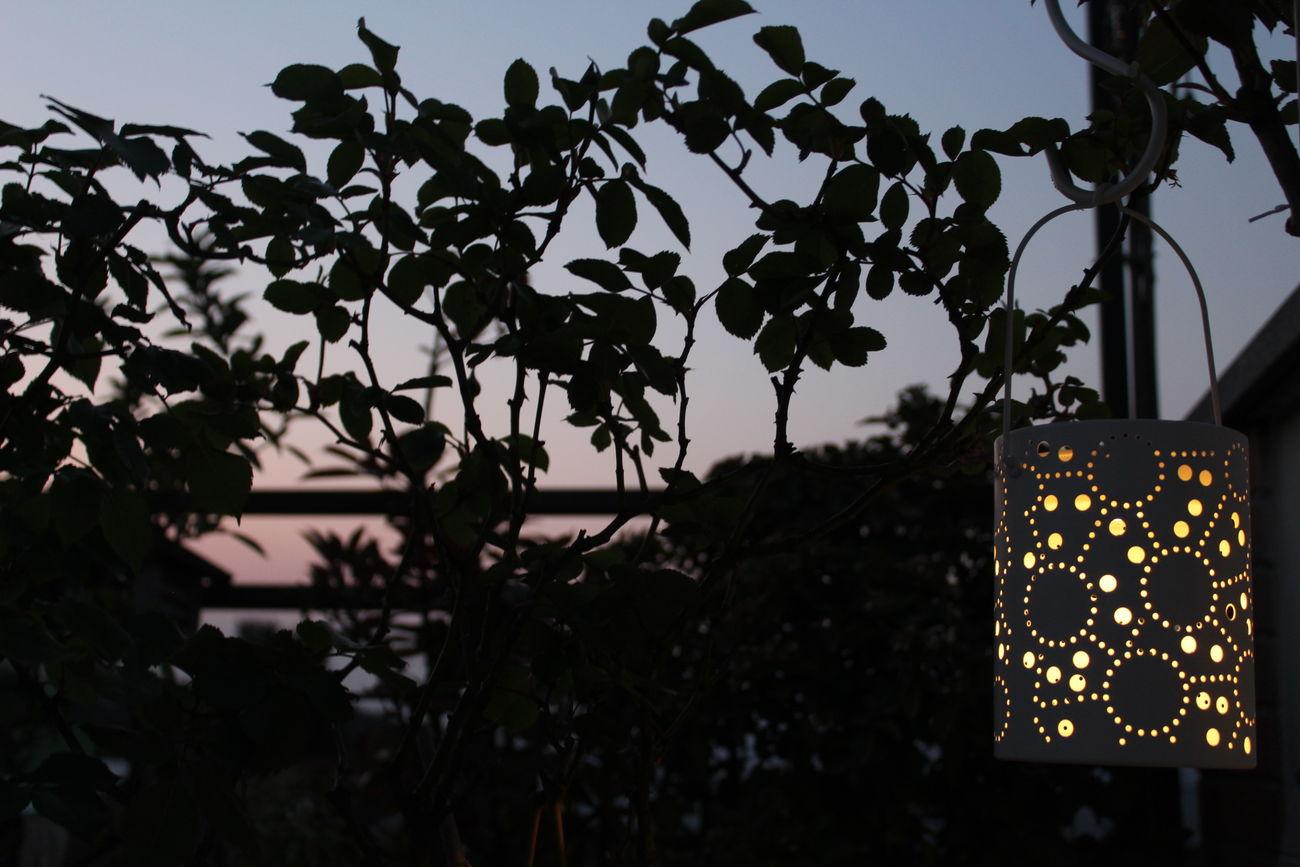 Night Illuminated Outdoors No People Sky Tramonto Lanterna Light Solar Light Springtime Spring Is Coming