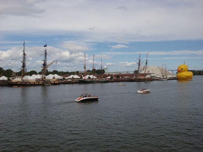Mamaduck Greenbay Dock Dockside