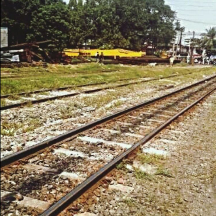 Railroadphotography Railway Railroadlife Railstagram railroad pnr wanderlust worlderlust instadaily instagood picoftheday pictureoftheday pictureofthemoment photooftheday