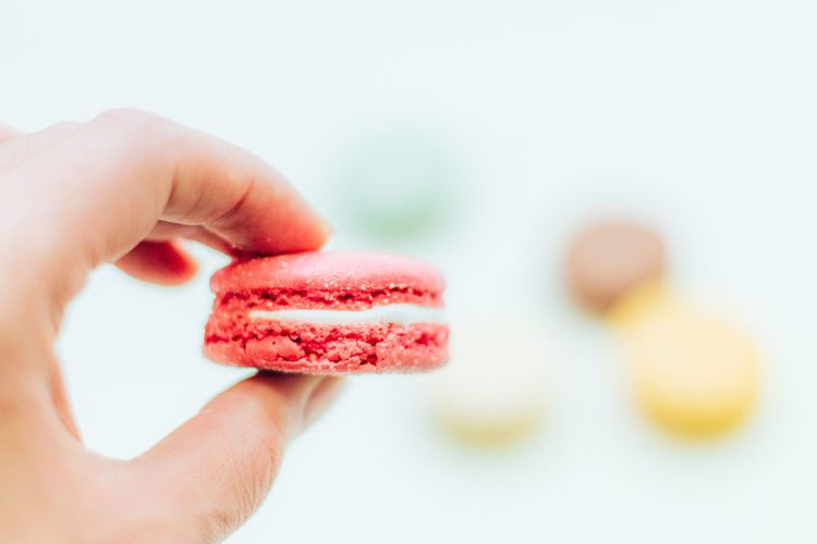 A Taste Of Life Lighter & Brighter Bold Neons, Bright Pastels EyeEmFiveSenses Pivotal Ideas Colorful Enjoying Life Macarons Composition Pastel Power Fine Art Food Freshness From My Point Of View Colour Of Life Hands At Work New Perspectives Holiday Desserts Home Is Where The Art Is Minimalism Minimalobsession Pastel Relaxing Still Life Learn & Shoot: Simplicity other my macaron pics▶️http://www.eyeem.com/search?q=macaron+koukichi&sort=relevance Handmade For You