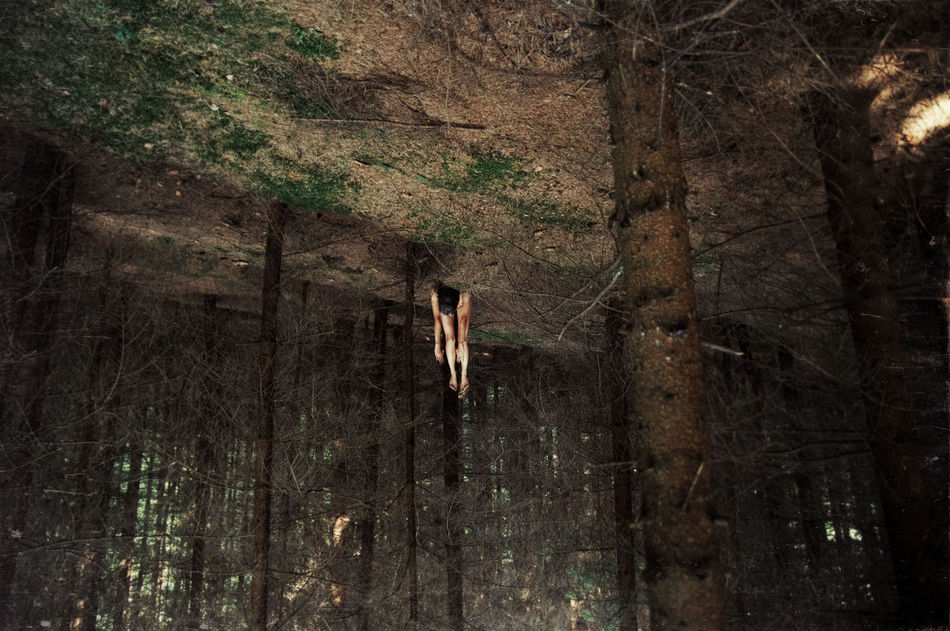 Gravity Brown Forest Girl Gravitation Green Linas Was Here On The Ground Rotate Spikes Thorns Trees Upside Down Woods