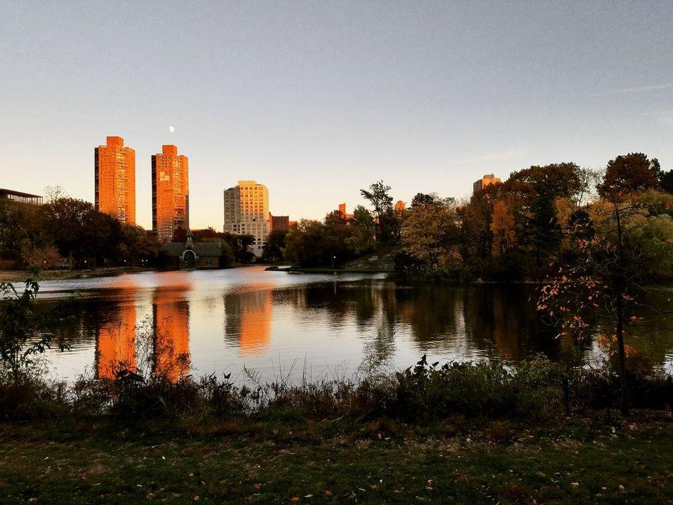 Central Park Beauty In NatureTravel Destinations New York City Autumn Fall