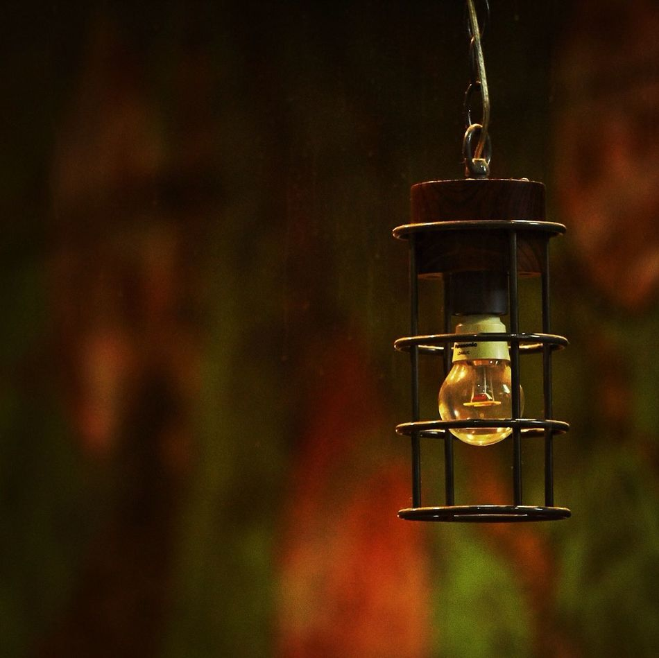 Beautiful stock photos of safety, Close-Up, Dusk, Focus On Foreground, Light Bulb