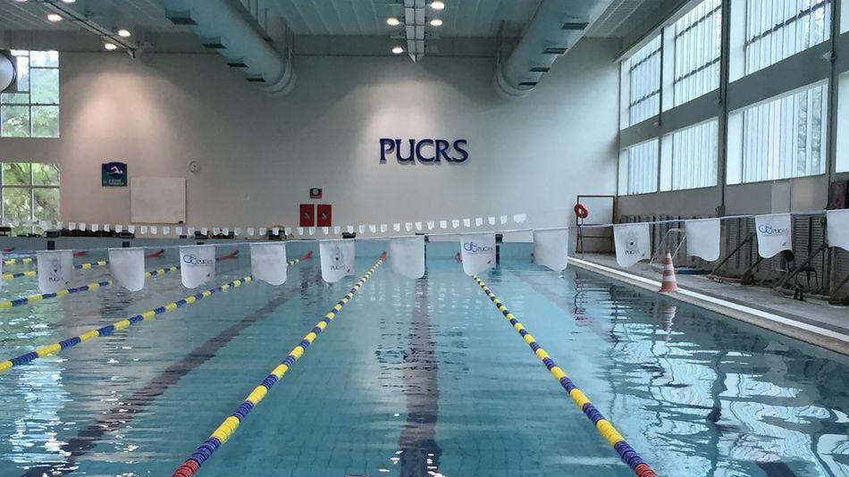 Swimming Pool Pool