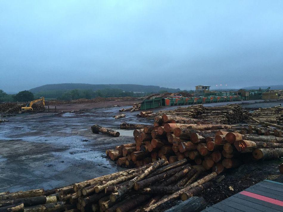 Log shortage lol