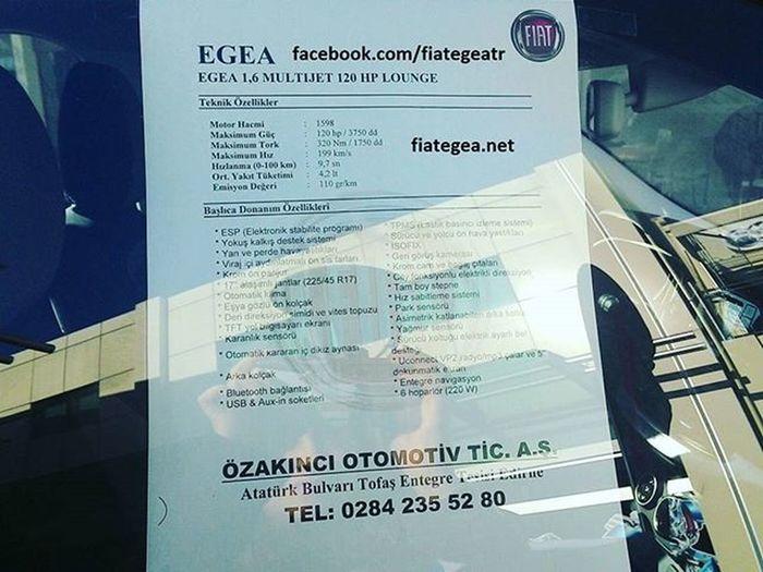 Fiat Egea Edirne'de http://fiategea.net Fiategea Fiat Fiategeanet özakıncı Fiatedirne Egeaedirne