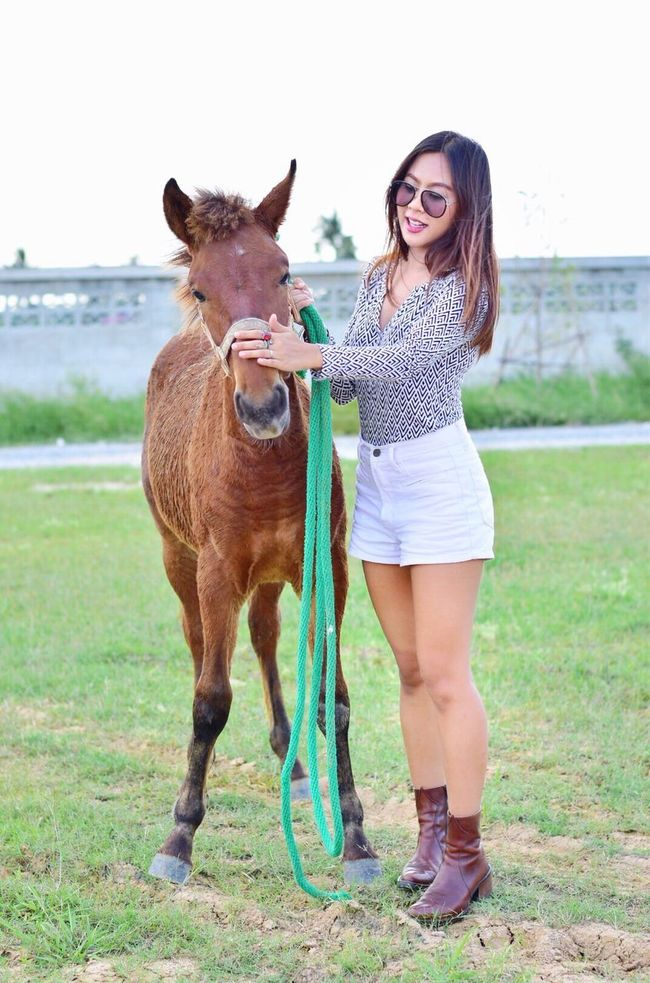 😘 Horse Today's Hot Look Girl Happiness Style Groom
