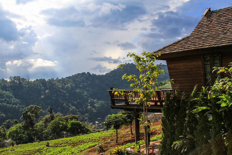 Hill tribe life Amazing Amazing View Chiang Mai Chiangmai Cottage Hill Hills Home House Landscape Landscape_Collection Mon Cham MONCHAM Mountain Moutain Nature Plant Plants Relax Sky Sky And Clouds Thailand Tree Unseen Unseenthailand