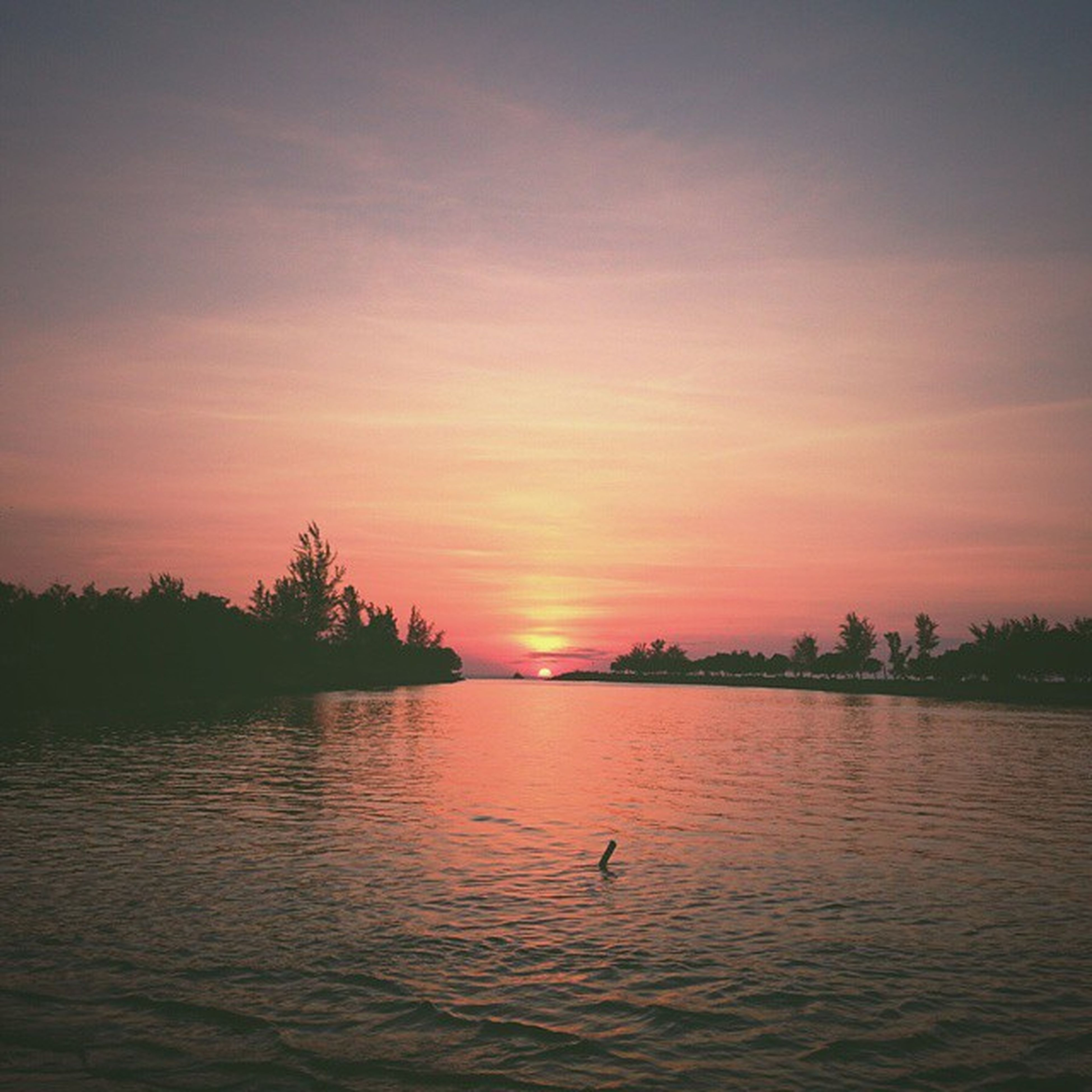 sunset, water, tranquil scene, scenics, orange color, silhouette, tranquility, sky, beauty in nature, waterfront, reflection, idyllic, nature, lake, sun, tree, cloud - sky, rippled, bird, cloud