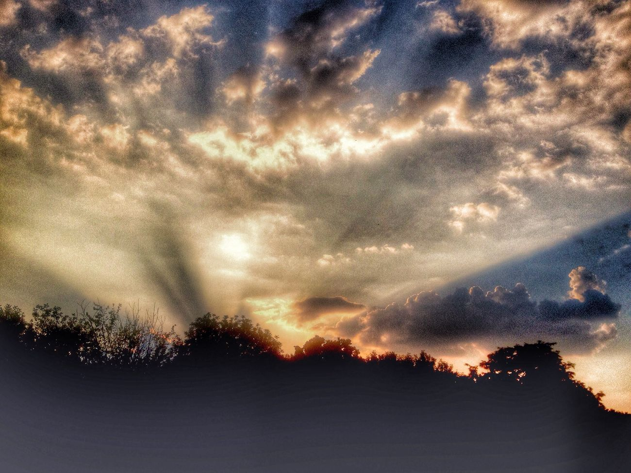 Hdr_Collection Silhouette