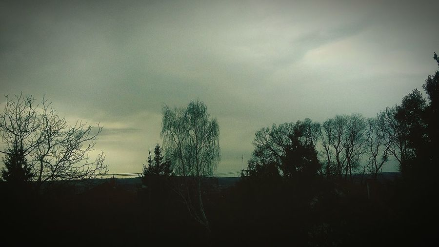 Sadness in cloudly time Nature Sky Tree Cloudly Day Sadness Times